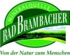 Bad Brambacher Garten-Limonade Orange 20x0,50 l